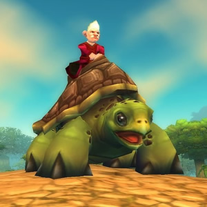 Riding Turtle Mount