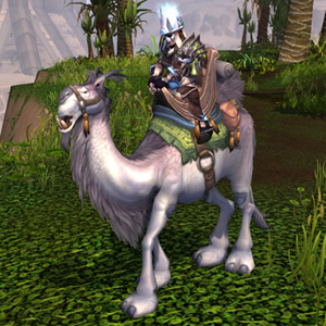 WoW TCG Mount White Riding Camel